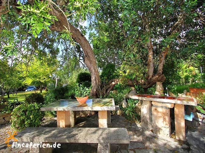 Mallorca ferienhaus mit pool und garten bei pollenca - Pool und garten ...