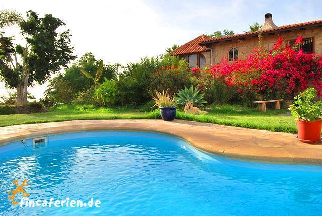 Teneriffa urlaub ferienwohnung mit pool und internet for Finca mit pool