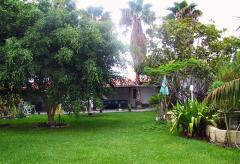 Günstiges Apartment in kleiner Ferienanlage auf Teneriffa (Nr. 7731.4)