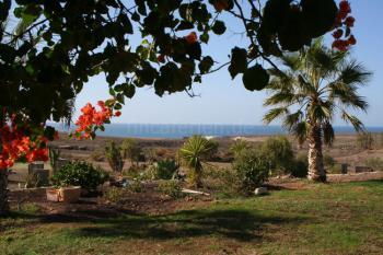 Fuerteventura Alternativ