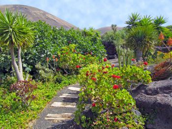 Garten der Finca