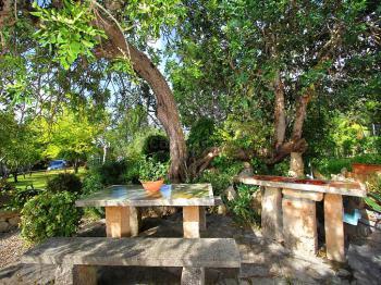 Schattige Sitzecke im Garten