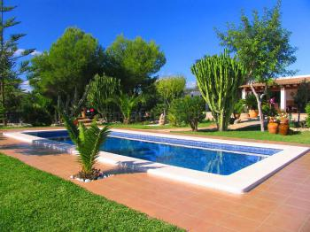 Gepflegter Garten mit Pool